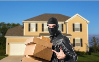 Package Thief Blog